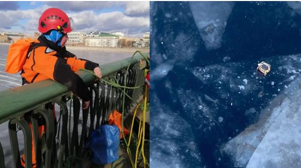 Черепаха на льду Невы